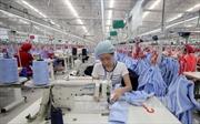 Doanh nghiệp dệt may dạy tiếng Anh miễn phí cho công nhân