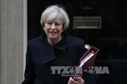 """""""Sách trắng"""" của Anh về kế hoạch rời EU bị chỉ trích là sơ sài"""