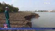 Khai thác cát trái phép làm sạt lở hàng chục ha đất canh tác