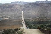 Tường biên giới Mexico - Mỹ đe dọa sự tồn vong của loài bướm chúa