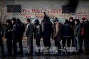Mỹ đột kích bắt hàng trăm người nhập cư bất hợp pháp