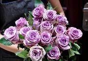 Hoa hồng ngoại 'giá khủng' được săn lùng dịp Valentine