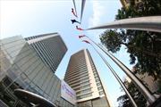 Ban hành quy chế quản lý tài chính của Tập đoàn Điện lực Việt Nam