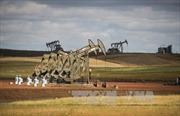 Các nhà sản xuất dầu mỏ Mỹ đang kìm hãm đà phục hồi của giá dầu
