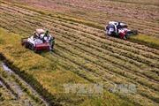 Giải pháp KHCN ứng phó biến đổi khí hậu - Bài 3: Tăng cường chuyển giao tiến bộ kỹ thuật trong nông nghiệp