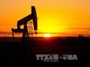 Giá dầu tăng trên thị trường thế giới