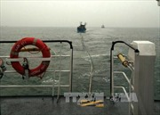 Cứu hộ kịp thời 10 ngư dân trong vụ tàu cá bị chìm do va chạm với tàu hàng