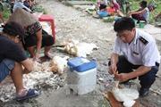 Virút cúm A(H7N9) tăng độc lực trên gia cầm