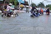 TP Hồ Chí Minh chủ động ứng phó với triều cường vượt mức báo động 3