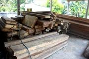 Liên tiếp bắt giữ các vụ vận chuyển gỗ trái phép