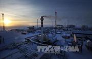 Nga: Quá sớm để bàn gia hạn thỏa thuận cắt giảm dầu mỏ