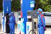 Bất cập trong quy trình gia hạn chứng nhận kinh doanh xăng dầu ở Cà Mau