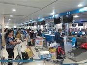 Cảng hàng không quốc tế Tân Sơn Nhất dự kiến tăng số chuyến bay dịp Tết