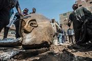 Khai quật tượng khổng lồ của Pharaoh có nhiều con nhất Ai Cập cổ đại?