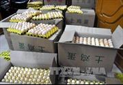 Bắt liên tiếp 2 vụ vận chuyển 18.000 quả trứng gà nhập lậu