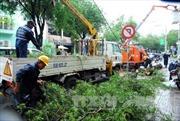 TP Hồ Chí Minh liên tiếp xảy ra mưa bất thường
