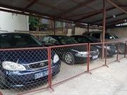 Bộ Tài chính yêu cầu tổng kiểm tra việc 'thanh lý xe công giá 46 triệu đồng/xe'