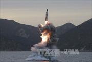 HĐBA LHQ phản đối mọi hành vi gây mất ổn định của Triều Tiên