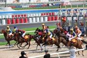 Khánh thành trường đua ngựa Thiên Mã – Madagui