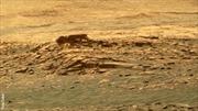 Hình ảnh giật mình về 'người ngoài hành tinh' trên Sao Hỏa