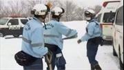 Lở tuyết ở Nhật Bản, 8 học sinh bị chôn vùi