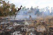 Giải pháp ngăn chặn lấn chiếm đất rừng