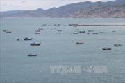 Rơi xuống biển, một thuyền viên tàu cá mất tích tại biển Trường Sa