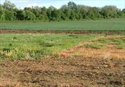 Sửa luật tạo thuận lợi cho tích tụ ruộng đất