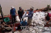 Hiện đại hóa đánh bắt hải sản xa bờ