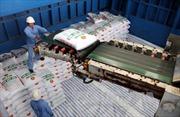 Bộ Công Thương nhận hồ sơ yêu cầu dùng biện pháp tự vệ cho sản phẩm phân bón