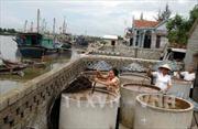 Nghệ An xây dựng các cụm chế biến hải sản tập trung