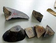 Hải quan Nội Bài phát hiện lô hàng hóa nghi là sừng tê giác