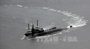 Mỹ sẽ phối hợp với các đối tác đối phó với Triều Tiên