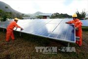Năng lượng tái tạo: Tiềm năng 100, khai thác được 3