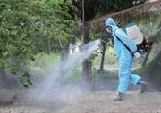 Đắk Nông xuất hiện một ổ dịch cúm gia cầm H5N1