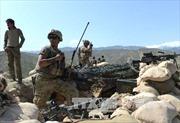 Afghanistan không kích tiêu diệt 27 tay súng IS