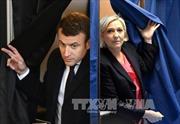 1/3 cử tri Pháp không bầu cho cả 2 ứng viên tổng thống
