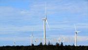 Hỗ trợ mở rộng quy mô điện gió tại Việt Nam