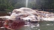 Xác 'quái vật bí ẩn' dạt vào bờ biển Indonesia gây hoang mang