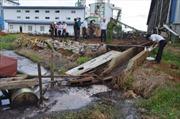 Đắk Nông: Xử lý ô nhiễm môi trường tại Nhà máy sản xuất ván và Veneer gỗ