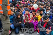 Số người di cư đến châu Âu giảm mạnh