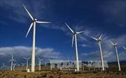 Nhật Bản đầu tư xây dựng công viên phong điện lớn nhất Mỹ Latinh
