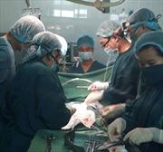 Bệnh viện quận phẫu thuật thành công cho cụ bà bị u gan phức tạp