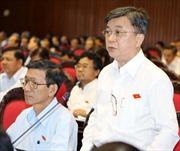Đại biểu Quốc hội: Lợi ích nhất thời sẽ hủy hoại bán đảo Sơn Trà