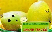 Ngỡ ngàng với những trái cây lạ và khủng nhất Việt Nam