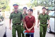Hà Tĩnh bắt giam giám đốc doanh nghiệp trốn thuế hơn 2 tỷ đồng