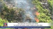 Cháy rừng tại quần thể danh thắng Tràng An, Ninh Bình