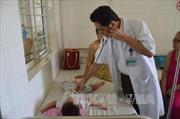 Nguy cơ bệnh sốt xuất huyết bùng phát thành dịch khi vào mùa mưa ở Cần Thơ