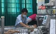 Trẻ nguy kịch do viêm não Nhật Bản gia tăng