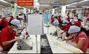 Ủy ban hỗn hợp về FTA giữa Việt Nam và EAEU họp phiên đầu tiên